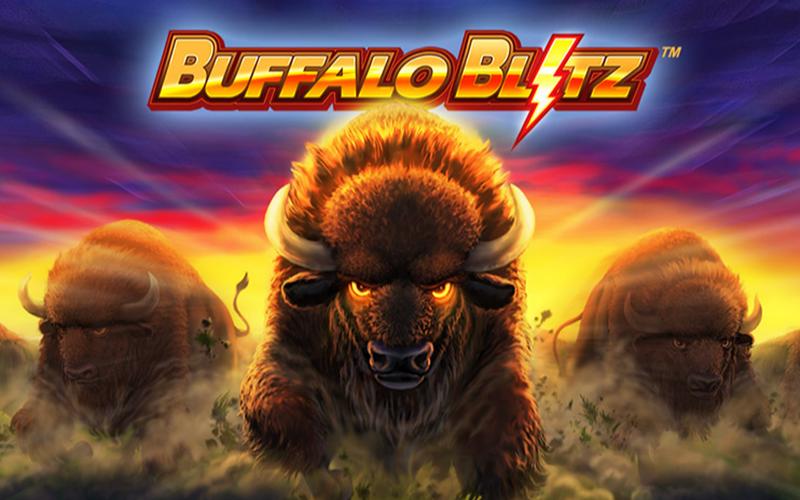 game slot Buffalo Blitz