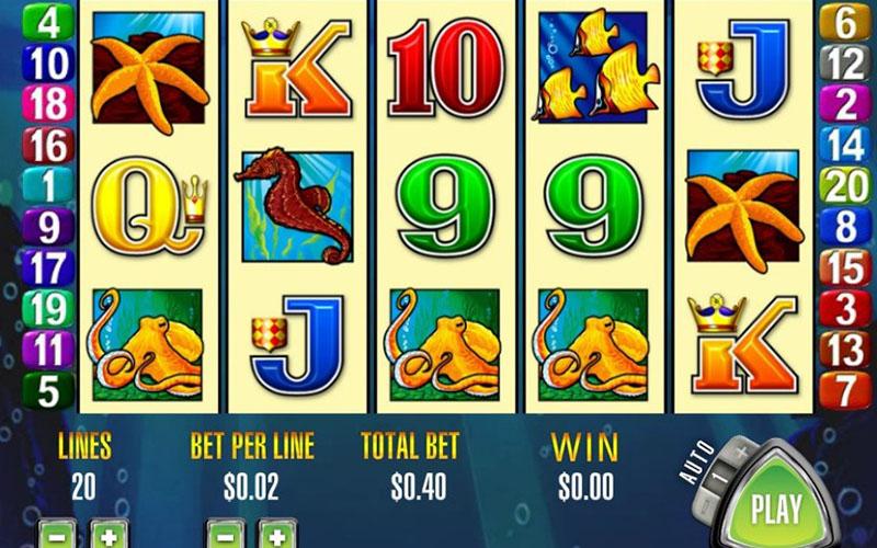 Điểm đặc biệt ở game slot Dolphin Treasure